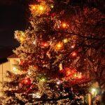 První rozsvícení vánočního stromu v obci