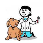 Očkování psů