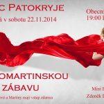 Svatomartinská zábava 2014