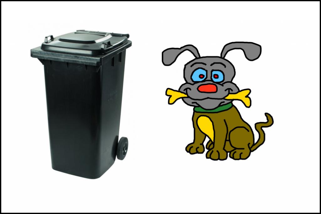 Odpady a psi